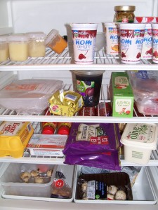 unhealthy-fridge1