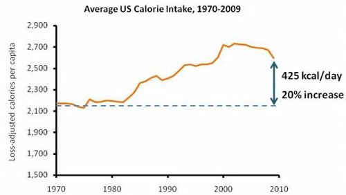 calorie-intake-in-usa