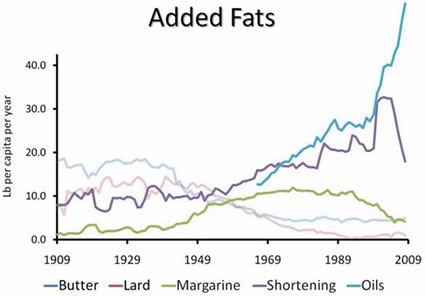 fat-consumption-in-usa-x