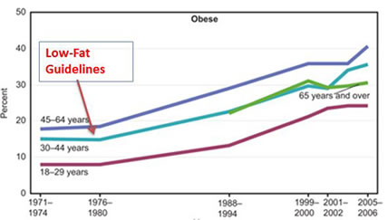 low-fat-guidelines1x