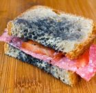 Is Moldy Food Dangerous?