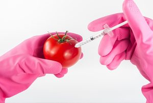 gmo-in-ready-meals